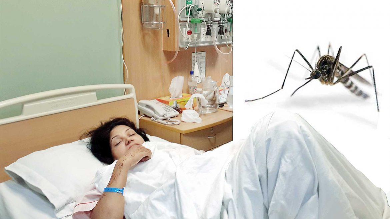 Sốt xuất huyết ở bà bầu nguy hiểm ra sao và cách phòng ngừa hiệu quả